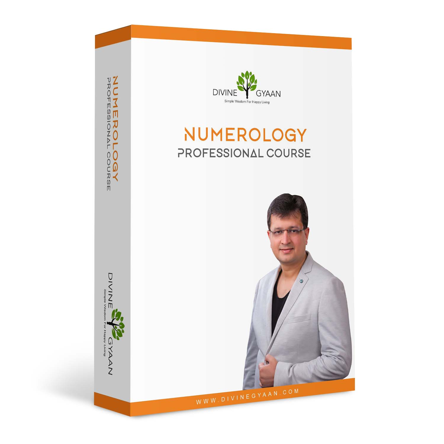 Numerology Professional Course